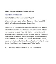 New Sudden Fiction